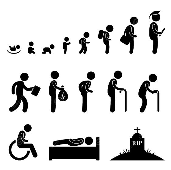 evolucion vida
