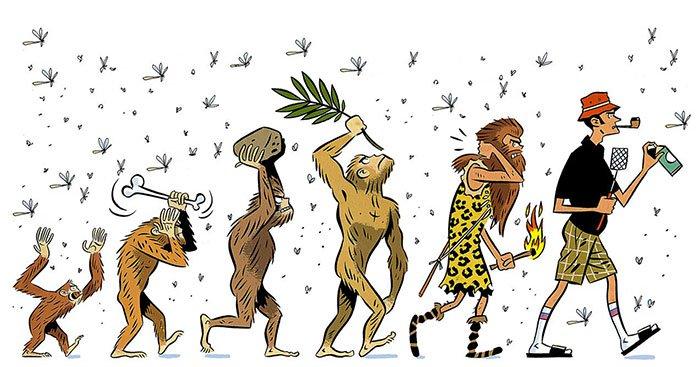 Imágenes-sátiras-de-la-evolución-del-hombre-12