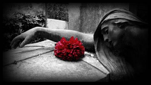 Rosas+sobre+tumba