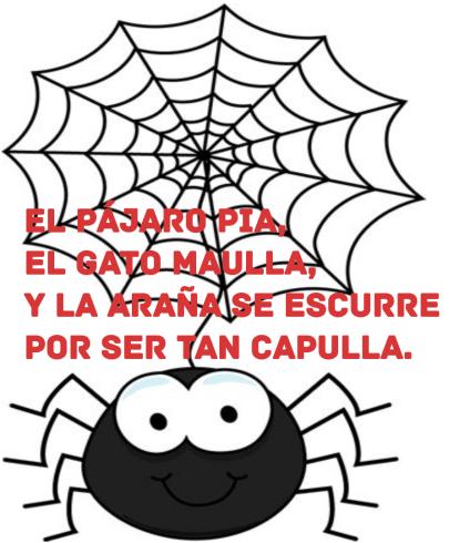 gloria-araña