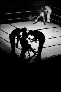 massats-boxeo