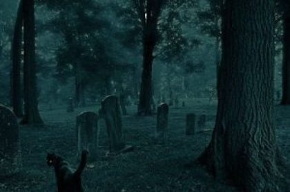 cementerio-viviente-300x2004278083867106573312.jpg
